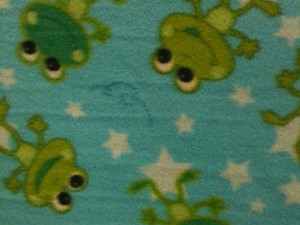 Frogs and Stars